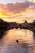 Sunset in Rome in front of the Basilica di San Pietro, Sant'Angelo bridge and the river Tevere from Umberto I bridge. Rome, Rome district, Lazio, Europe, Italy.