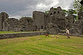 United Kingdom, Northern Ireland, County Down, the monastic ruins at Inch Abbey were moulded into the Twins and the Riverlands, the Hoster Tully funeral was set here, and it's also where the Hound and Arya journeyed towards the Red Fork