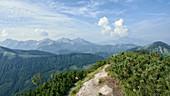 View from Wasserklotz (Reichraminger Hintergebirge) towards the Haller Mauern / Nördliche Kalkalpen, border region between Upper Austria and Styria, Austria.