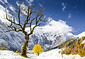Autumn colors in the Ahornboden, Eng, Bavaria, Karwendel