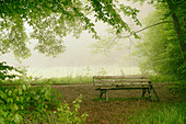 Bench in the morning mist at the lake, Bavaria, Germany