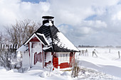 Snow-covered Finnish sauna house, Georgshof, Ostholstein, Schleswig-Holstein, Germany