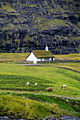 Church with a grass roof in one of the most beautiful places in the world, Saksun, Streymoy Island in the Faroe Islands.