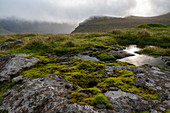 Raised moor on the island of Sreymoy in the Faroe Islands,