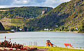 Der Rhein mit Blick auf Burg Maus bei Wellmich, Rheinland-Pfalz, Deutschland