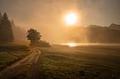 Nebliger Oktobermorgen am Geroldsee, Krün, Bayern, Deutschland