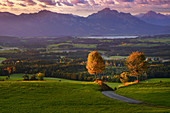 Das Tor zum Herbst, Auerberg, Bayern, Deutschland