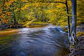 Herbstabend an der Würm, Leutstetten, Bayern, Deutschland