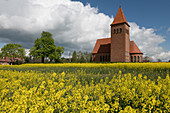 Catholic Church Levitzow behind the blooming rape field, Mecklenburg-Western Pomerania, Germany