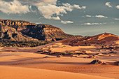 Coral Pink Sand Dunes State Park, Utah, USA, North America
