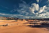 Coral Pink Sand Dunes State Park, Utah, USA, North America