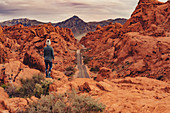 Woman stands in Valley of Fire State Park, Las Vegas, Nevada, USA, North America, America