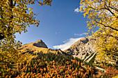 Blick auf die Gamsjochgruppe im Karwendel, Großer Ahornboden, Karwendel, Tirol, Österreich