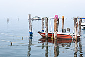 View of the fishing port of Pellestrina, in the background the fishing huts on stilts, Venetian lagoon, Pellestrina, Veneto, Italy, Europe