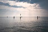 Wide view of the Venice lagoon, Pellestrina, Veneto, Italy, Europe