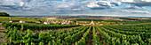 Wine growing in Champagne, Montagne de Reims, Ville-Dommange, panorama, village church, France