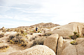 Father and son hiking in the rocky landscape of Jumbo Rocks in Joshua Tree Park, California, USA.