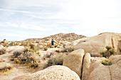 Vater und Sohn wandern in der Felsenlandschaft der Jumbo Rocks im Joshua Tree Park, Kalifornien, USA