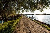 Riverside path in the Danube Delta in the evening sun in April, Mila 23, Tulcea, Romania.