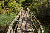 Wooden bridge on the Old Rhine, near Jechtingen, Sasbach, Kaiserstuhl, Baden-Württemberg, Germany
