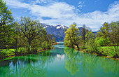 The Loisach near Kochel am See in spring, Bavaria, Germany