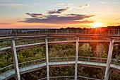 Sunset on the Steigerwald Treetop Path, Ebrach, Bamberg, Upper Franconia, Franconia, Bavaria, Germany, Europe