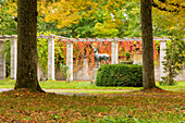 The castle garden on Schwanberg in autumnal dress, Rödelsee, Kitzingen, Lower Franconia, Franconia, Bavaria, Germany, Europe