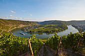 View from the Kröver Nacktarsch vineyard to the Moselle loop of Kröv, Rhineland-Palatinate, Germany, Europe