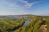 View of the new Moselle valley bridge near Urzig, Rhineland-Palatinate, Germany, Europe