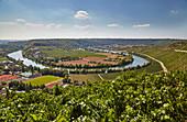 The Neckar loop near Mundelsheim, Kraichgau, Baden-Wuerttemberg, Germany, Europe