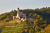 Hornberg Castle in Steinbach-Neckarzimmern, Neckar, Kraichgau, Baden-Wuerttemberg, Germany, Europe