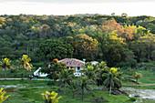 Almada Farm, guest house, coastal rainforest, Mata Atlantica, Bahia, Brazil, South America