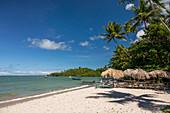 Beach, Praia de Moreré, Boipeba Island, Bahia, Brazil, South America