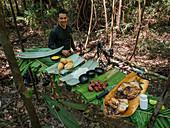 Excursion to the Amazon rainforest near Manaus, Amazon Basin, Brazil, South America