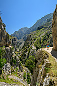 Woman hiking through the Ruta del Cares gorge, Cares Gorge, Picos de Europa, Picos de Europa National Park, Cantabrian Mountains, Asturias, Spain