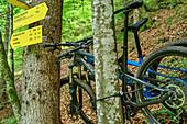 Mountain bikes lean on the tree at signpost, Sonntagshorn, Chiemgau Alps, Chiemgau, Upper Bavaria, Bavaria, Germany