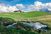 Small pond on the Alpe di Siusi in South Tyrol, Italy