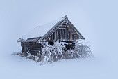 Frozen small barn in Kochelmoos, Schlehdorf, Upper Bavaria, Bavaria, Germany