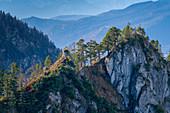 Blick von der Sonnenspitz auf das Graseck, Kochel am See, Oberbayern, Bayern, Deutschland