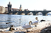 The Charles Bridge in Prague, Czech Republic on March 2nd 2018\n\n\n\n\n