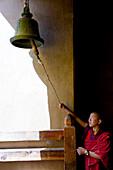 Young monk ringing bell, Festival; Gangtey Dzong or monastery; Phobjikha Valley, Bhutan