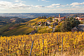 Vineyards and castle, near Alba, Langhe, Italy