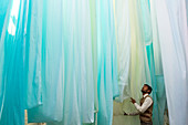 Sari Factory, Textiles dried in the open air, The textiles are hung to dry on bamboo rods, the long bands of textiles are about 800 metre in length, nr Jaipur, Rajasthan, India\n