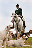 Fox hunting, horseman & hounds, Gloucestershire, UK