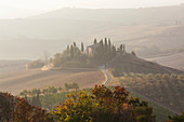 Early morning, Val d'Orcia, Tuscany, Italy