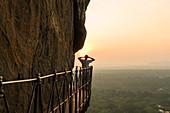 Admiring view from Lion Rock, ancient fortress, Sigiriya, Sri Lanka