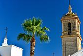 Kirchturm und Palme bei herrlich blauem Himmel, bei Pilas, Andalusien, Spanien