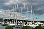 Marina with many sailing boats in the yacht harbor of Bibinje near Zadar, Croatia