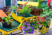 Horse-drawn carriage decorated with colorful flowers in Vodice, Adriatic Sea, Croatia