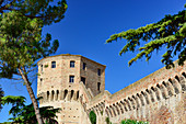 Old city wall with defense tower and trees in the park, Jesi, Ancona province, Italy